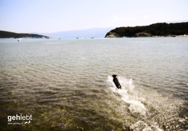 Wandern Rab Kroatien Sahara-Bucht (3)