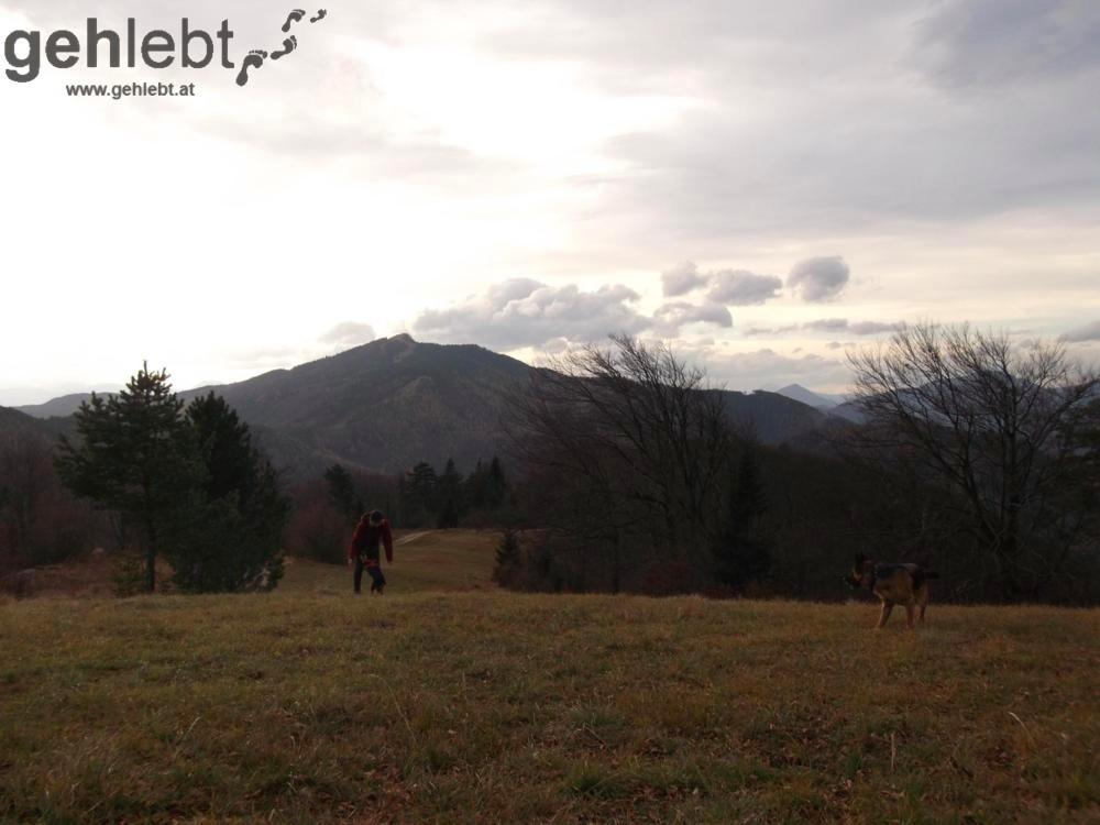 Herbstwanderung Kieneck - Blick zum Unterberg