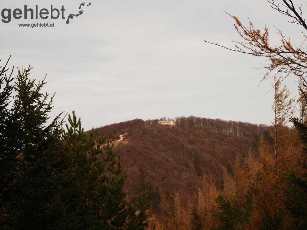 Herbstwanderung Kieneck - Blick retour zur Enzianhütte