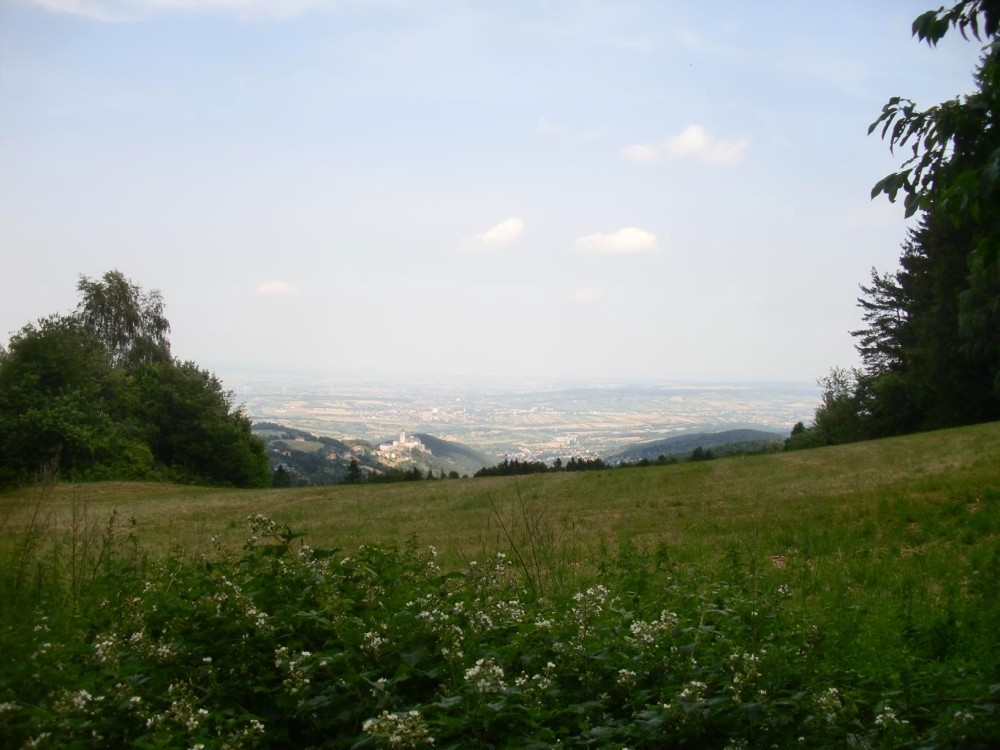 Mit Blick auf Mattersburg und Forchtenstein kann die Rosalia auftrumpfen.