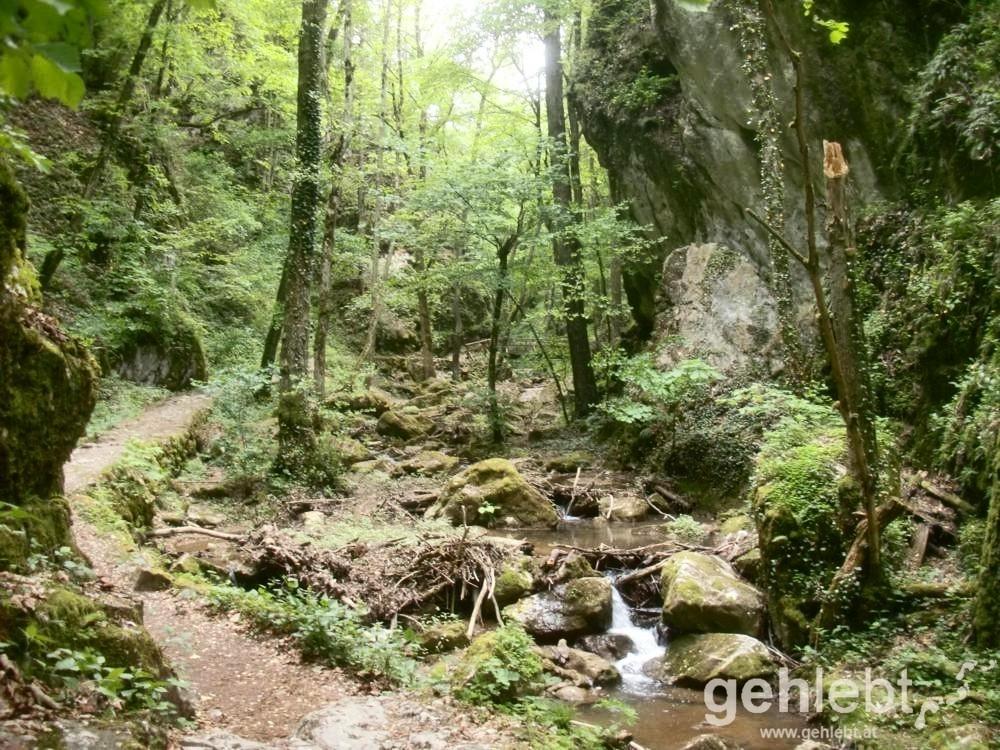 Der Weg führt bei Würflach durch die wildromantische Johannesbachklamm.