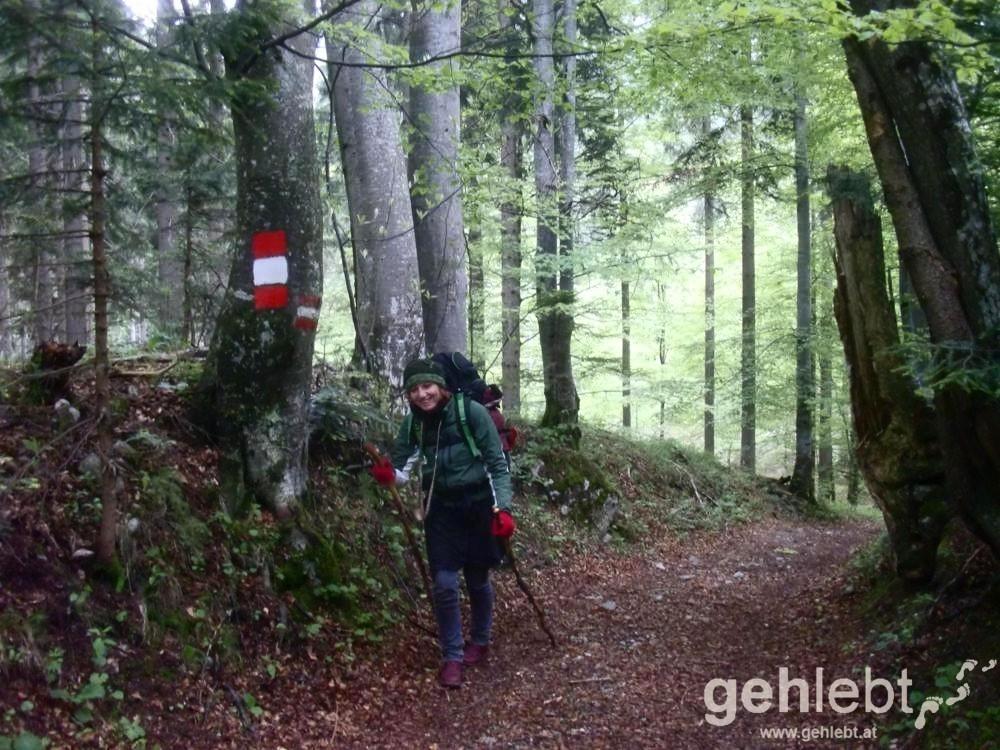 Mit Haube und Handschuhe wandet man Mitte Mai am Mariazellerweg.