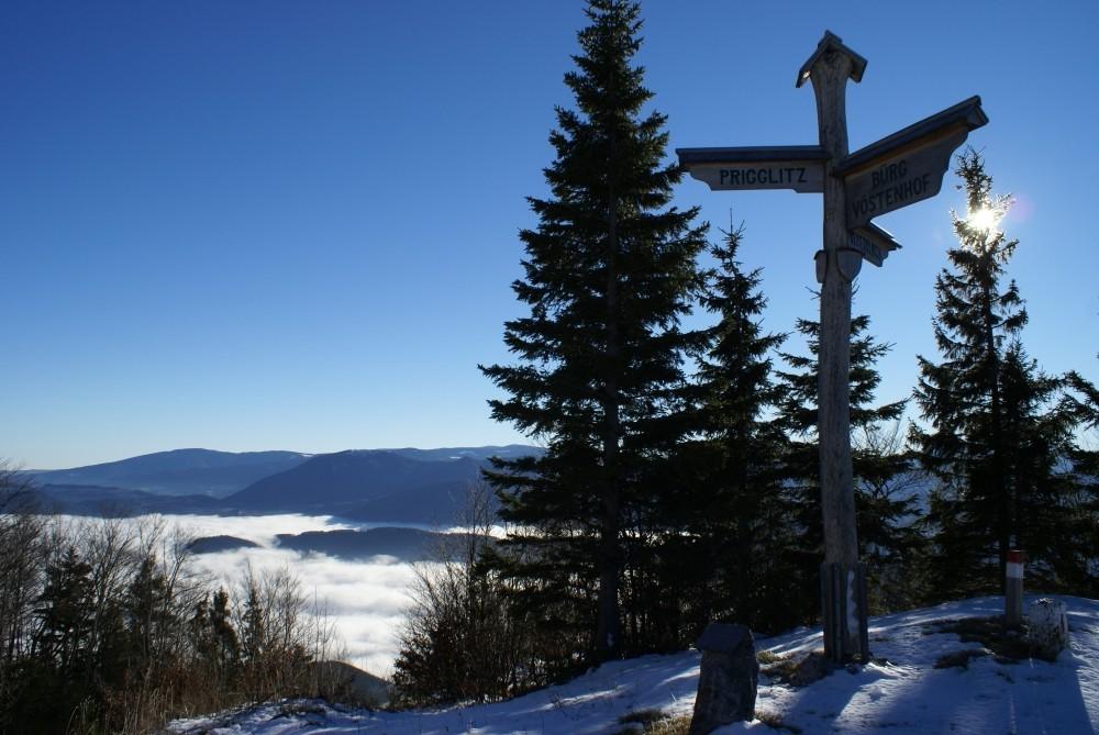 """""""Das Miteinander, nicht das Gegeneinander, ist der Weg."""" Wegweiser zum Innehalten an der Waldburgangerhütte."""