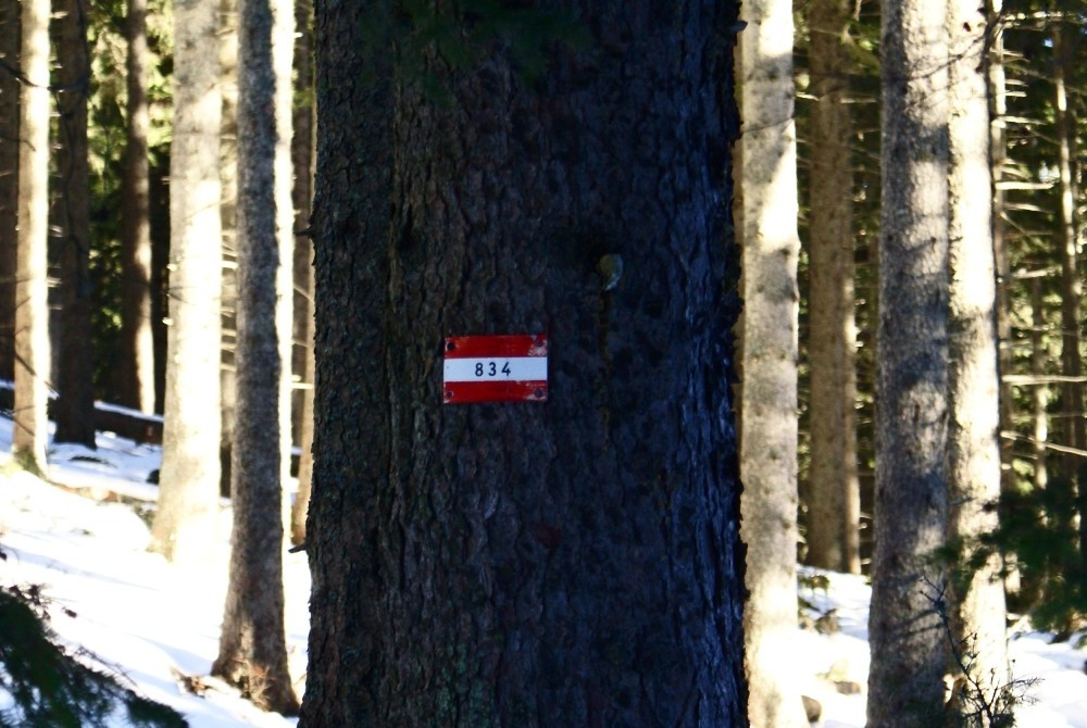 Die Wegnummer 834 und rot-weiß-rote Markierung kennzeichnet diesen Weitwanderweg.