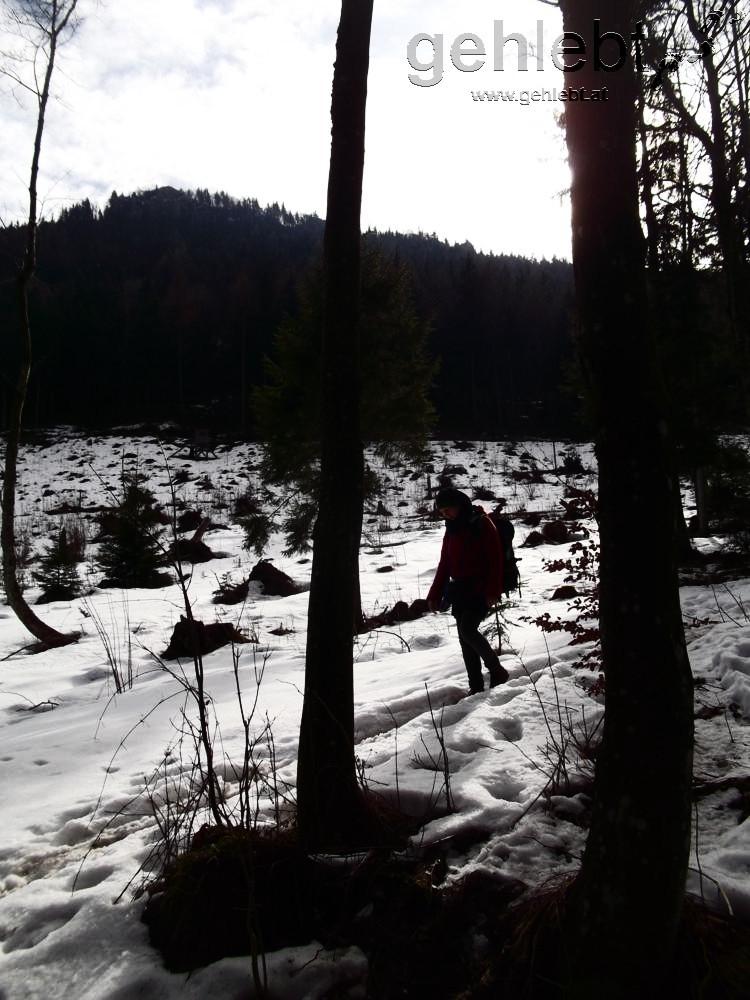 Am Nordhang des Schobersteins liegt noch Schnee, eine Seltenheit des heurigen Winters an der Alpennordseite.
