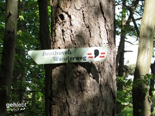 beethoven-wanderweg-40-11