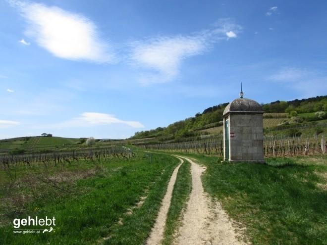 beethoven-wanderweg-40-8