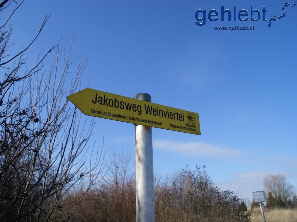 Der Jakobsweg Weinviertel startet im tschechischen Mikulov und übertritt bei Drasenhofen die Staatsgrenze.
