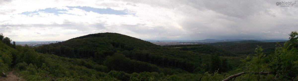 Panoramablick Wienerwald