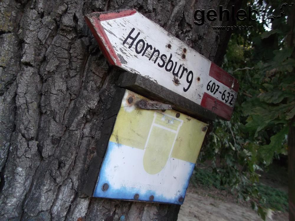 Gute Markierungen und ausreichende Beschilderungen kennzeichnen den Weinviertelweg 632.