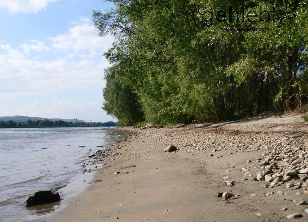 Strandfeeling an der Donauinsel