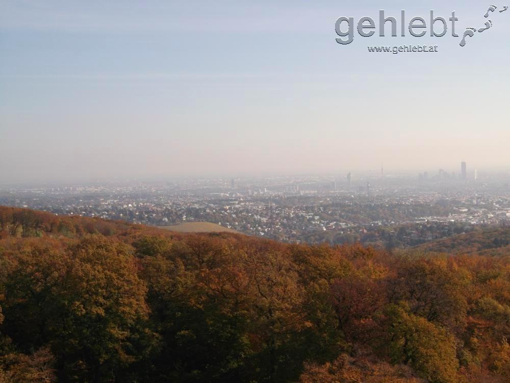 Blick auf Wien von der Jubiläumswarte.