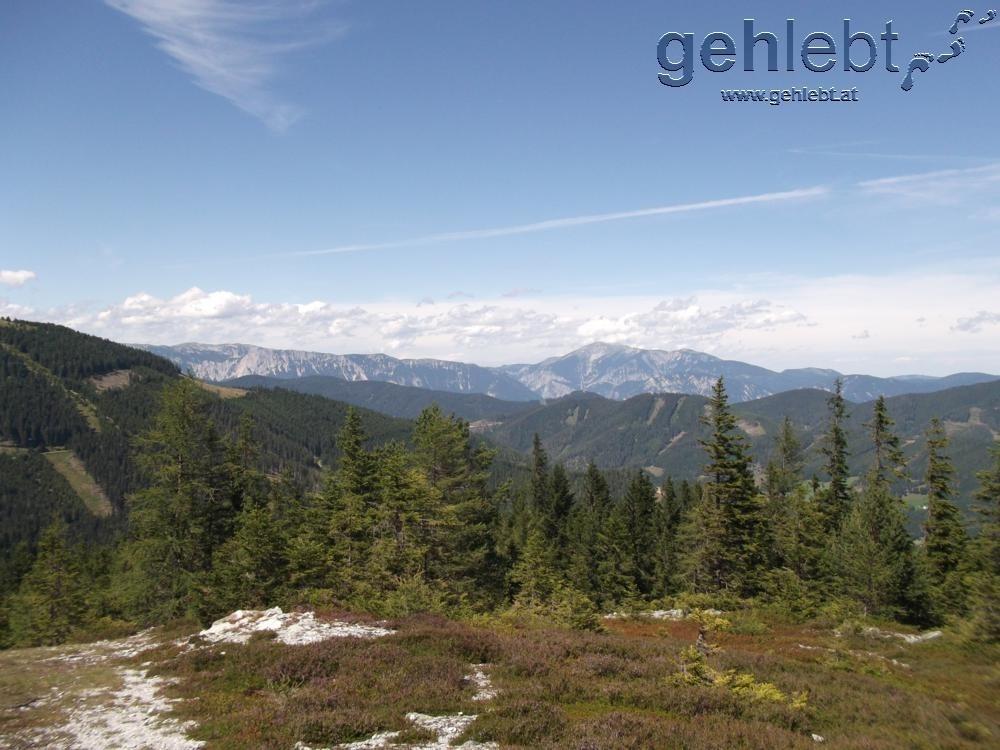 Nach dem steilen Aufstieg vom Pfaffensattel mit Blick auf Rax und Schneeberg
