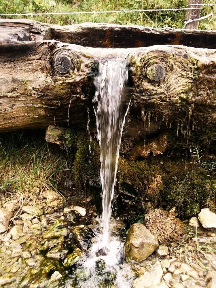 Wasserquelle