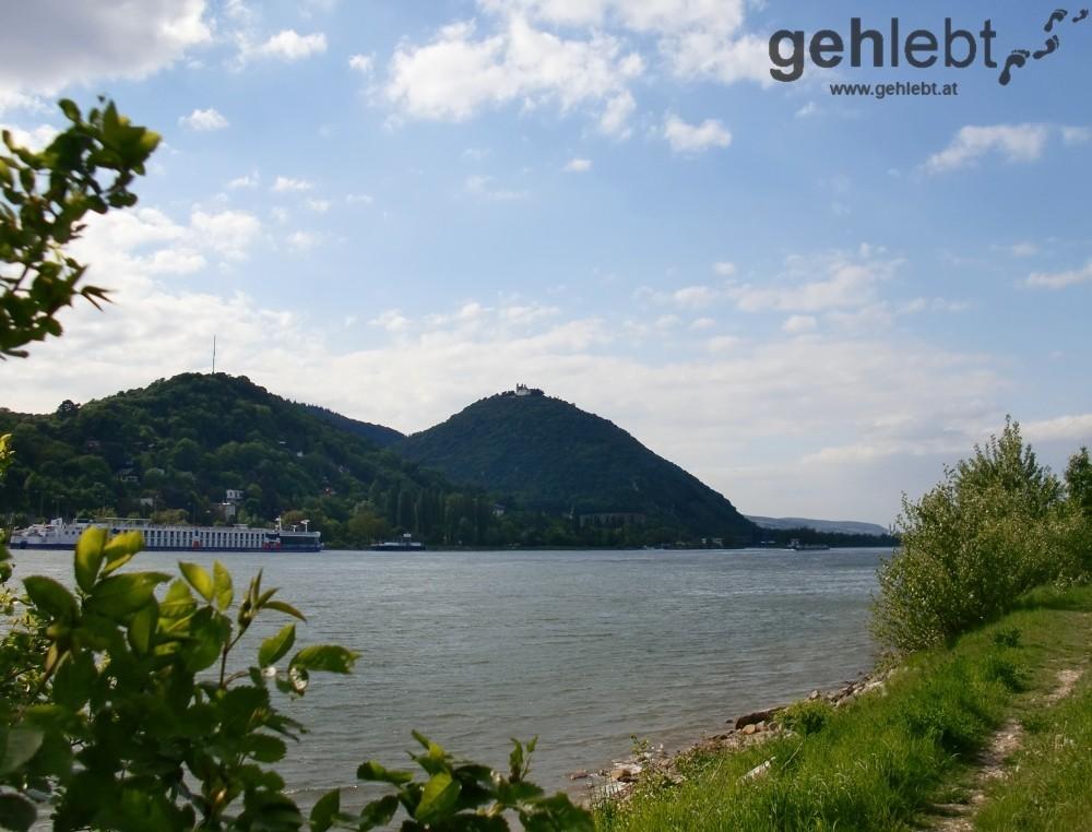 Blick vom Westufer der Donauinsel auf den Leopoldsberg - RUW 10.