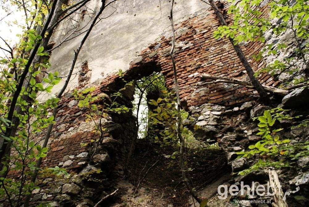 Aufsteig in das Innere der Ruine.