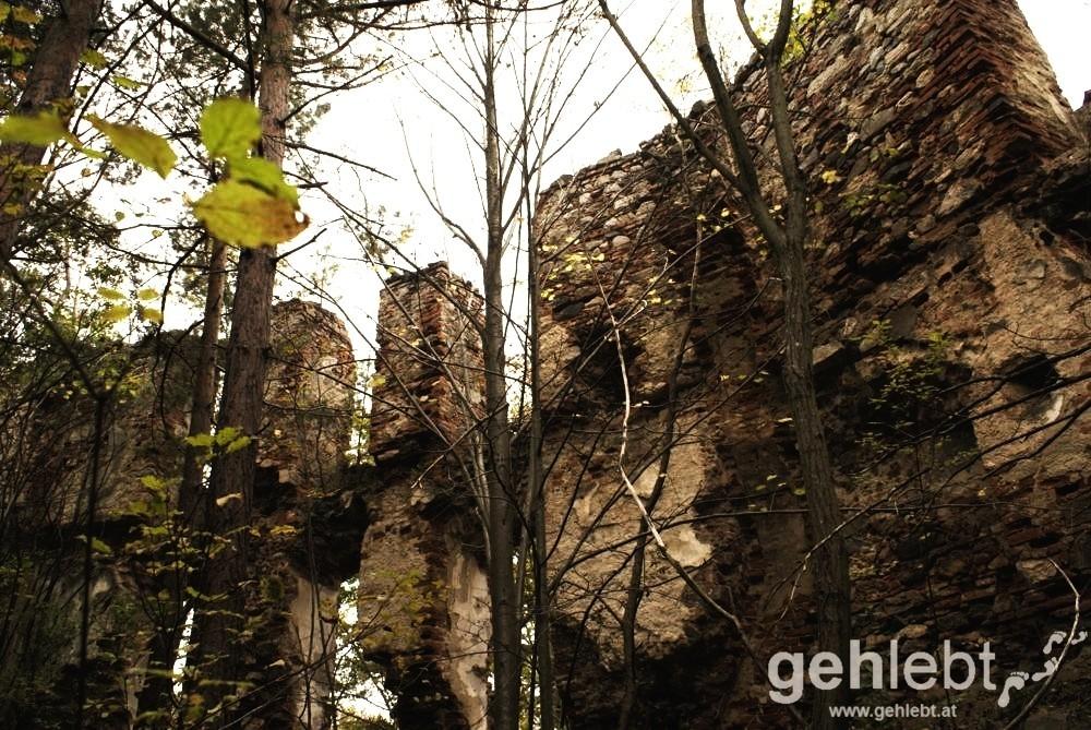 Gut erkennbar sind die restaurierten ziegelmauern.