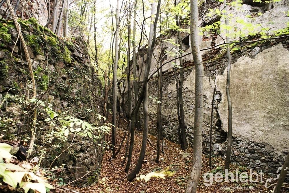 Die West-Mauer der Ruine ist ebenfalls noch gut erhalten.