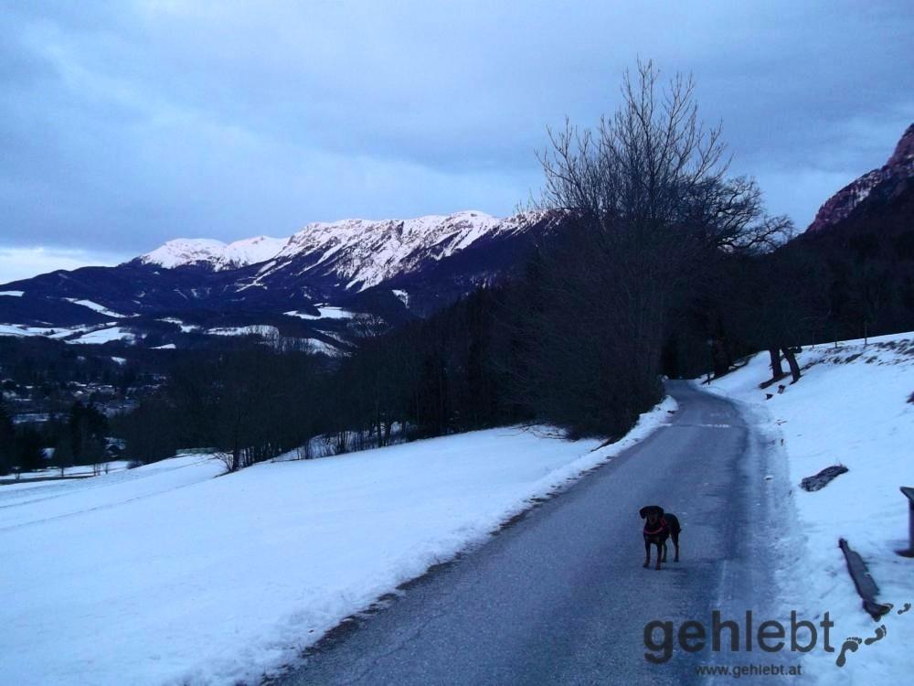 Winterwanderung Naturfreundehaus Knofeleben - Pirie-Göttin und die Rax-Göttin