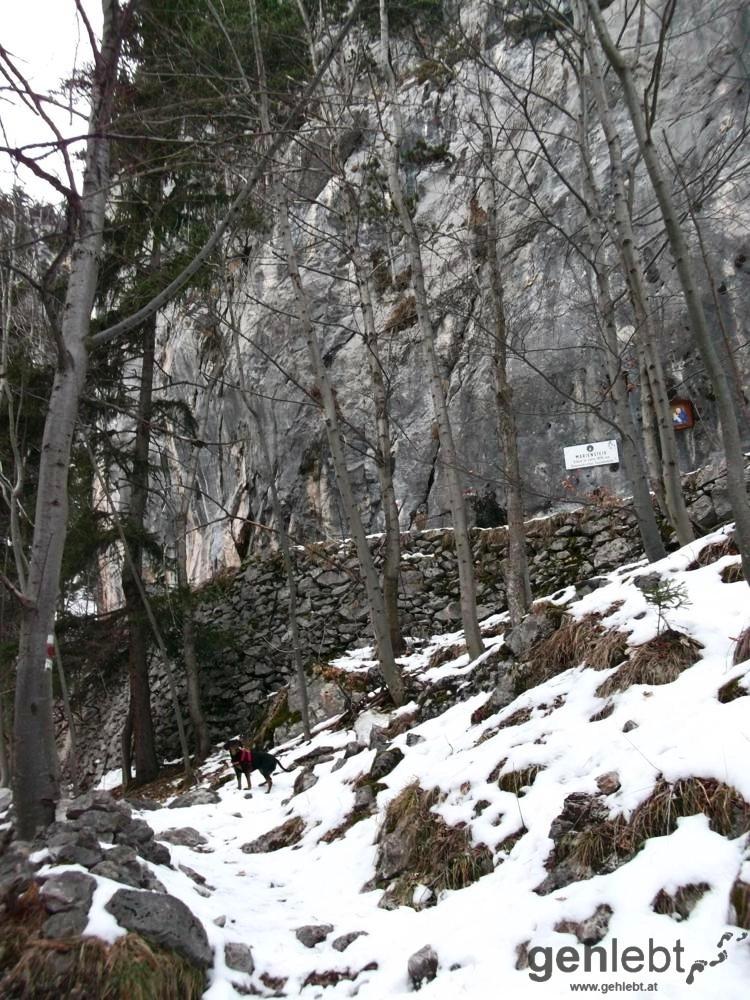 Winterwanderung Naturfreundehaus Knofeleben - Mariensteig