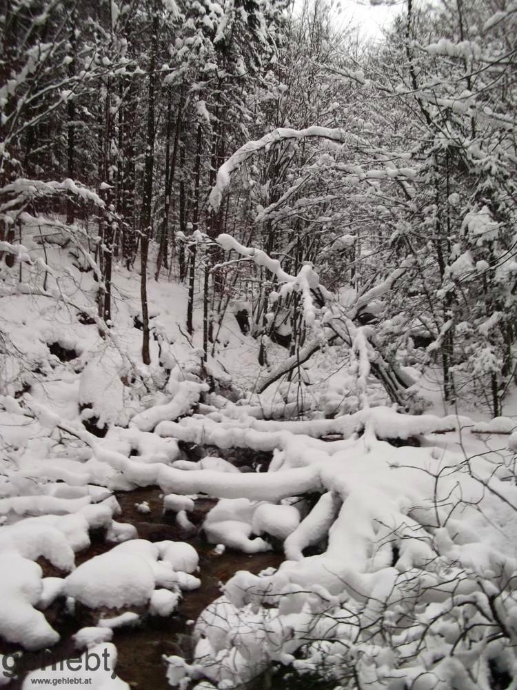 Schabenreitnerstein - Winterlandschaft