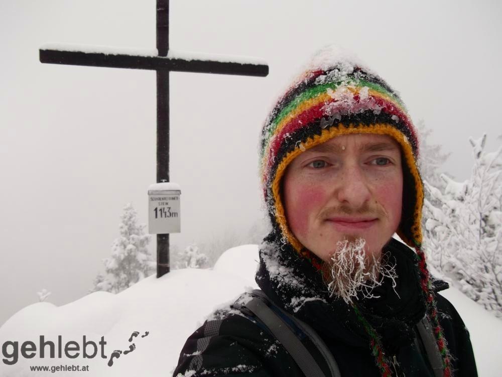 Schabenreitnerstein - Gipfel