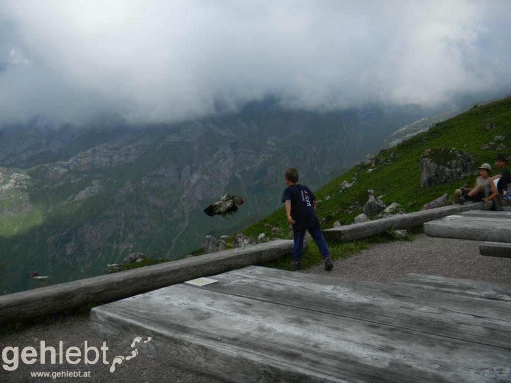 Augstenberg, Liechtenstein - der Hahn der Hütte