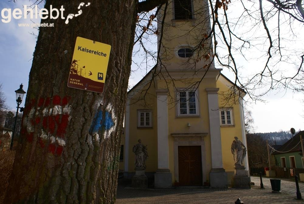 In Sulz am Wienerwald ist des Kaisers Eiche nicht weit.