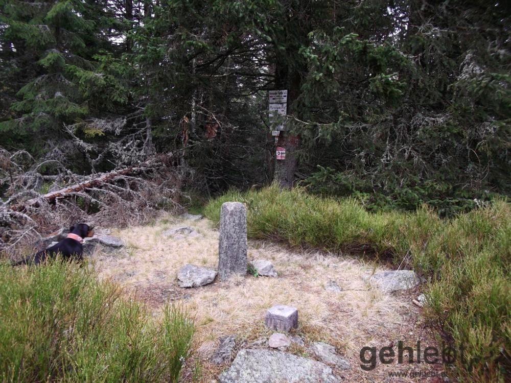 Der höchste Punkt der Tour: der Tratenkogel (früher auch Drahtekogel) mit 1.565m - keine Aussicht.