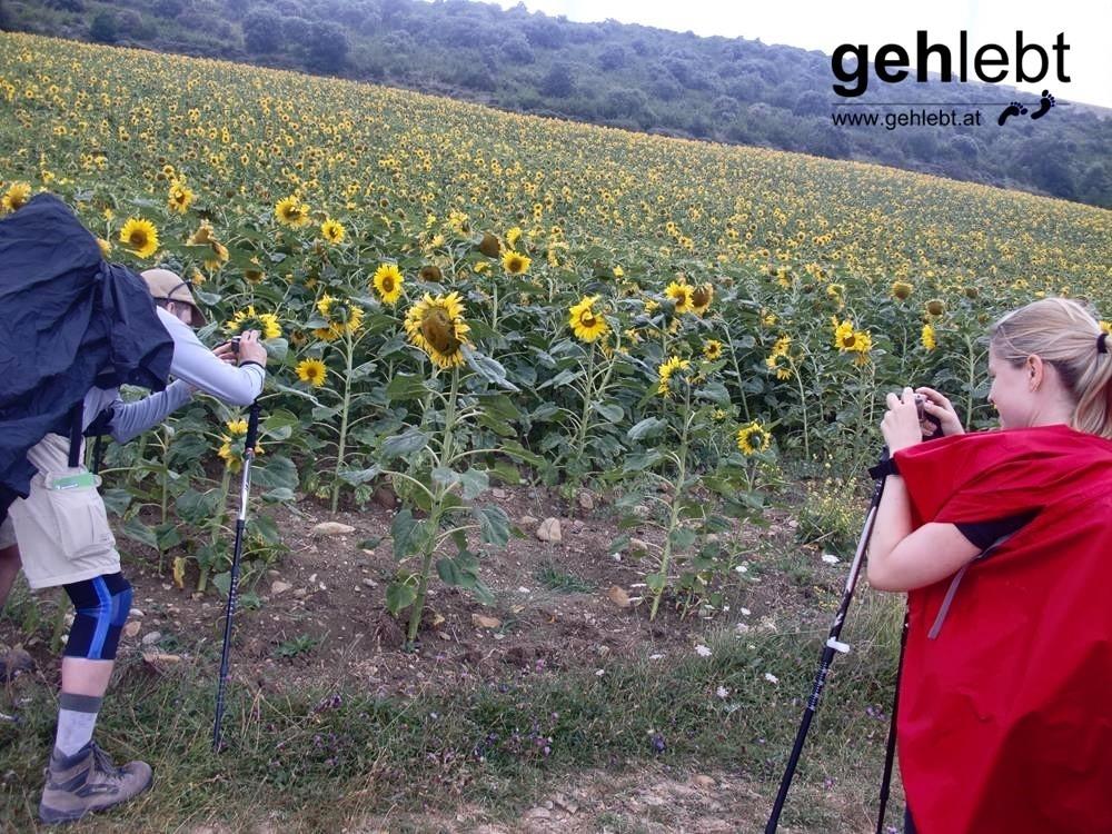 Ein Foto der fotografierenden Fotografin, welche den fotografierenden Fotografen fotografiert.