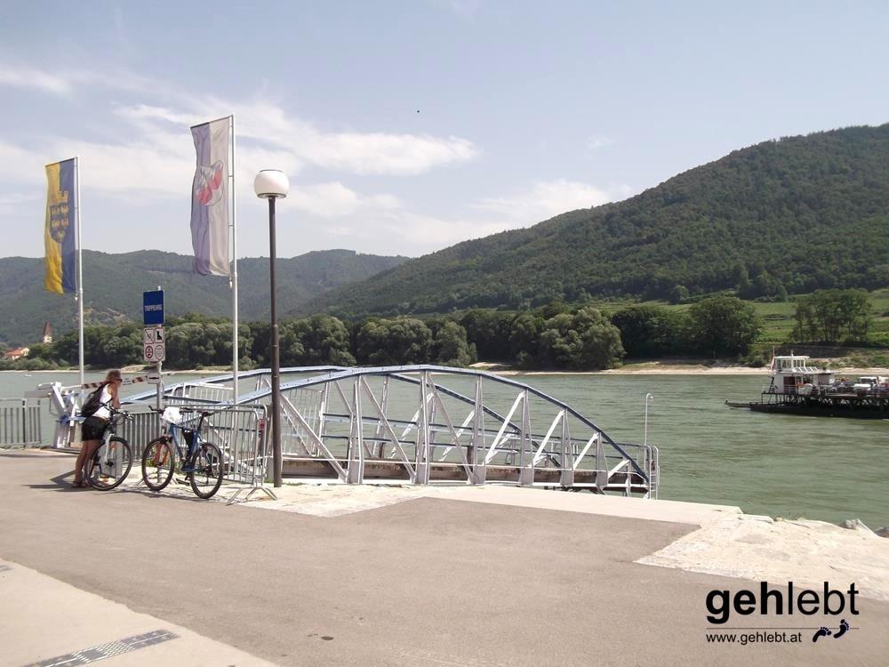 Im Viertelstundentakt schifft die Fähre Personen, Fahrräder und sogar Autos über die Donau.
