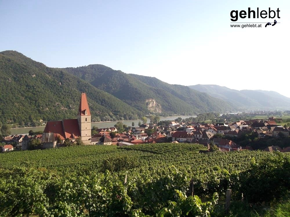 Der Markt Weißenkirchen liegt andächtig an der mächtigen Donau gelegen.