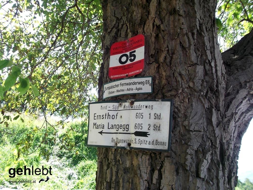 """Auf bekannten Wegen unterwegs auf der """"anderen"""" Seite der Wachau."""