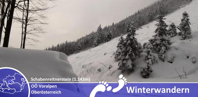 1302_titelbild_schabenreitnerstein