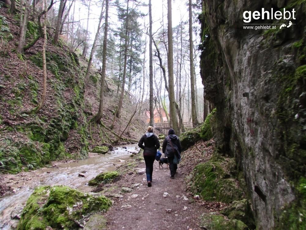 Am Ausgang der Johannesbachklamm blitzt uns die Schutzhütte schon entgegen.