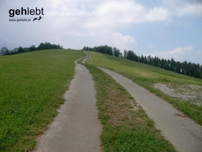 Ein asphaltierter Wiesenweg am Weg zum Damberg.
