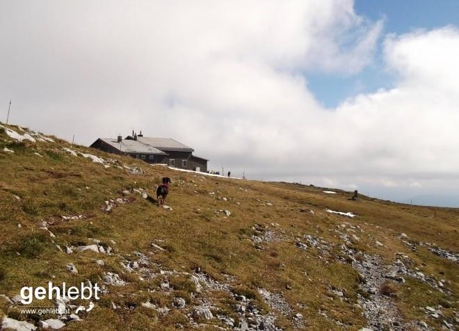 Das Klosterwappen und somit der höchste Berg von Niederösterreich ist nicht mehr weit entfernt.