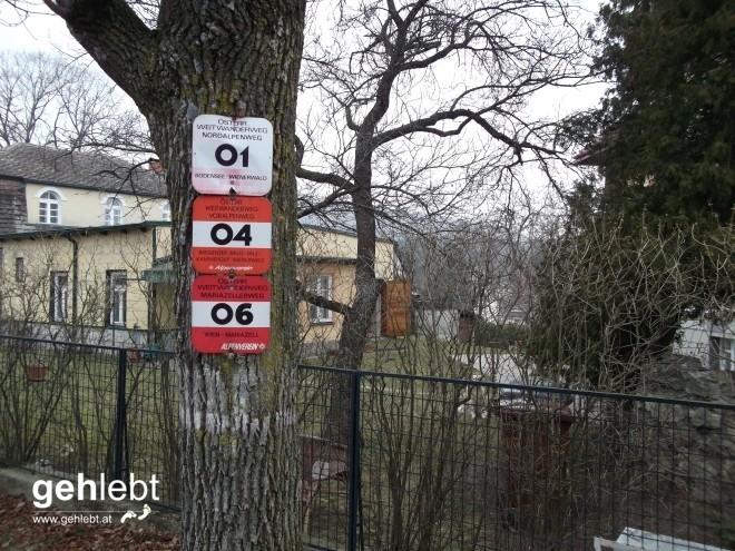 Es geht los. Perchtoldsdorf ist neben Rust am Neusiedlersee ein Startort des Nordalpenweges.