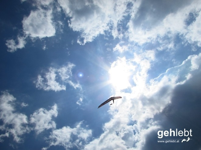 Ein Drachenflieger schwebt über uns hinweg.