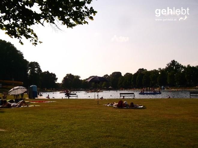 Eine Runde schwimmen und in der Wiese liegen im Freibad Fürstenfeld.