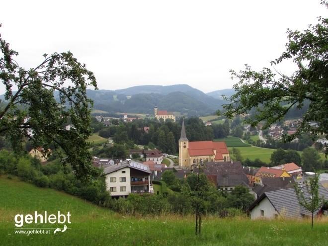 Blick von der Berta-Ruhe auf die Türme Waldhausens.