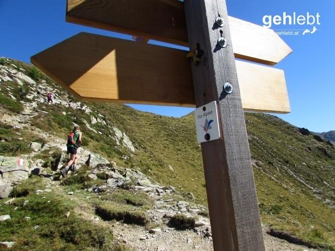 Mein Weitwanderherz schlägt hoch, als ich an der Grüblscharte die Via Alpina kreuze.