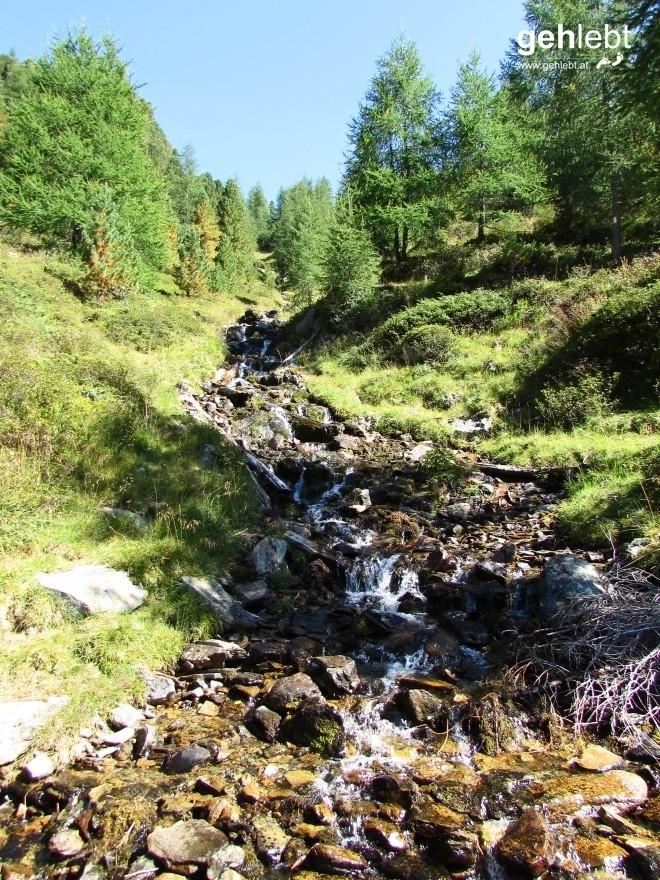 Ein bisschen Erfrischung tut gut, hier an einem Zufluss des Montalbaches.