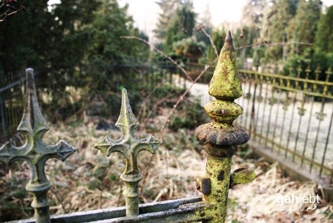 Frühmorgentliche Stimmung am Friedhof.