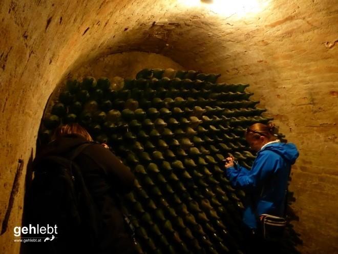 In die Grean gehen im Weinviertel_Blogger-DayTrip (21)