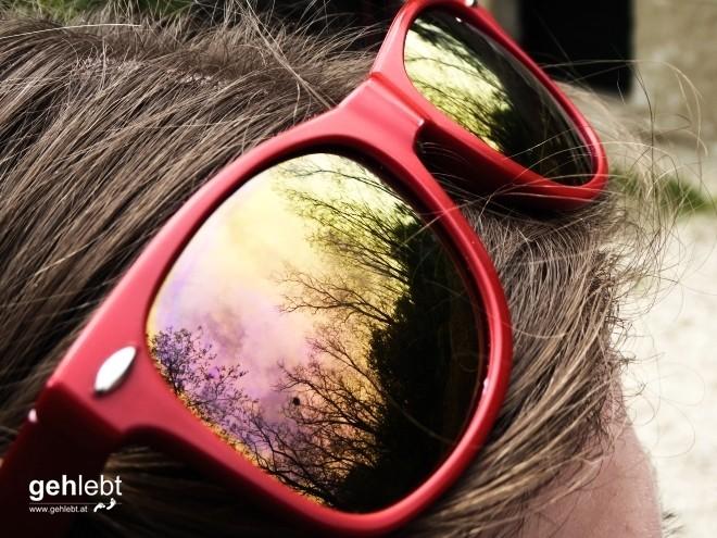 In die Grean gehen im Weinviertel_Blogger-DayTrip (23)