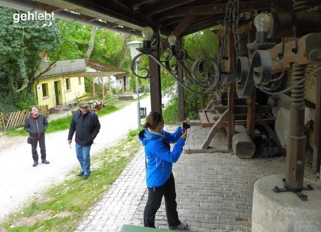 In die Grean gehen im Weinviertel_Blogger-DayTrip (28)