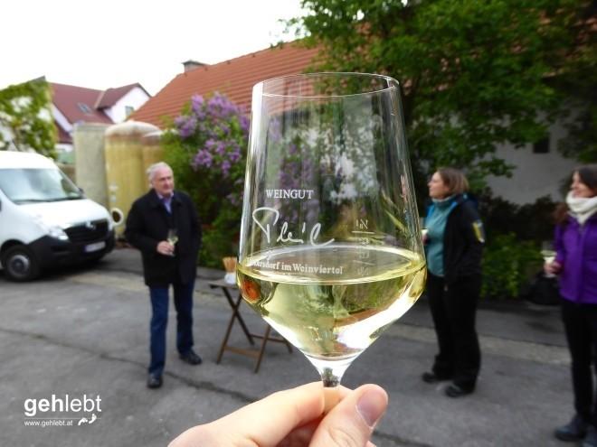 In die Grean gehen im Weinviertel_Blogger-DayTrip (3)