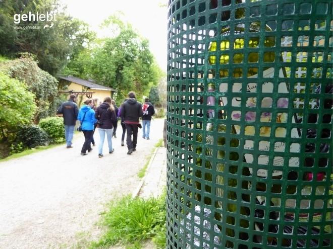 In die Grean gehen im Weinviertel_Blogger-DayTrip (32)