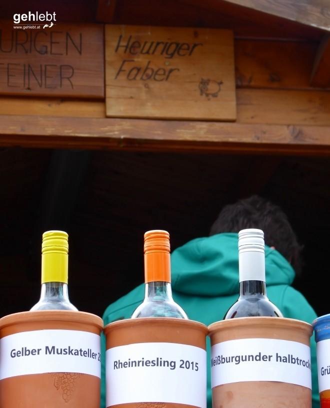 In die Grean gehen im Weinviertel_Blogger-DayTrip (36)